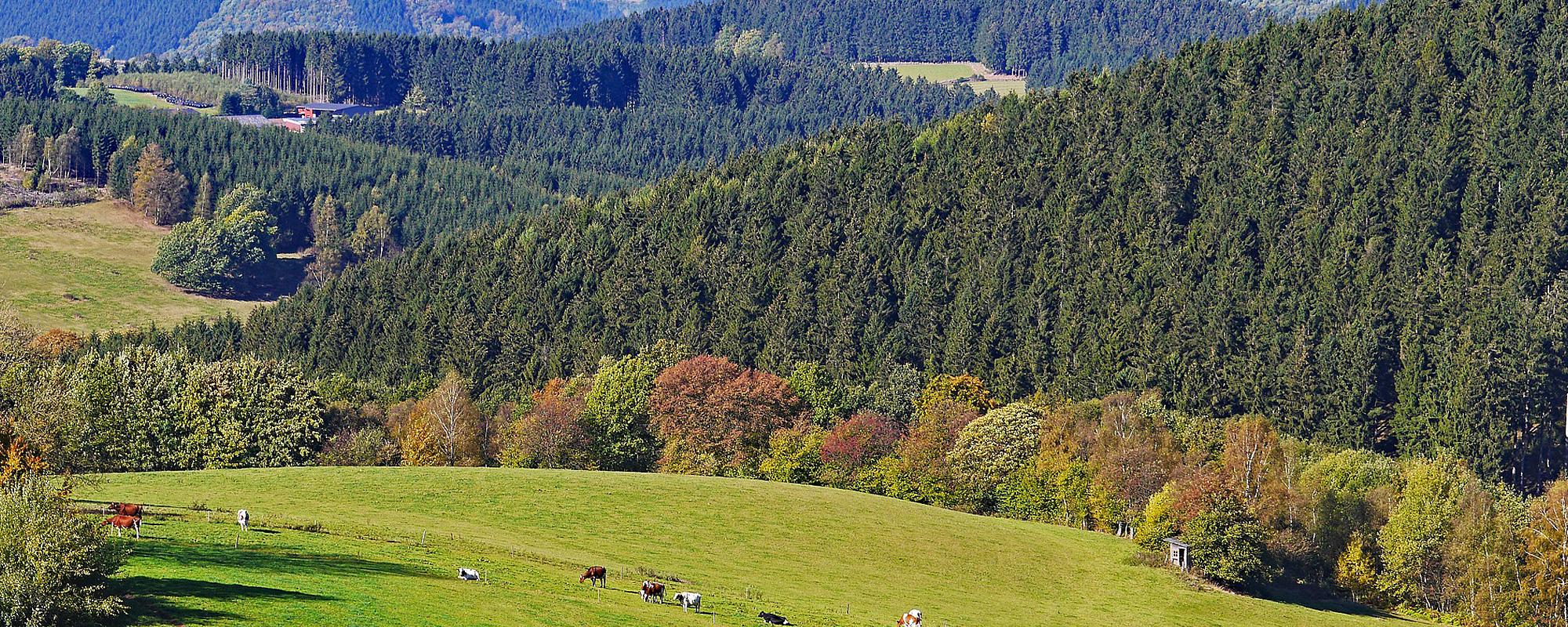 Motiv: Nordrhein-Westfalen - Gastgeberverzeichnis - Gastgeberverzeichnis für Ihren Urlaub in  Deutschland